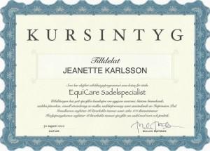 Stall Rustorp - Kursintyg Sadelspecialist
