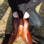 Stall Rustorp - sadelutprovning
